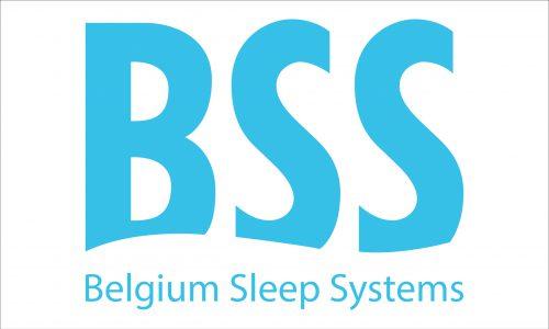 bss-logo